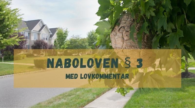 Naboloven § 3